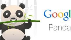 What is Google Panda and How does it affect traffic of a website?