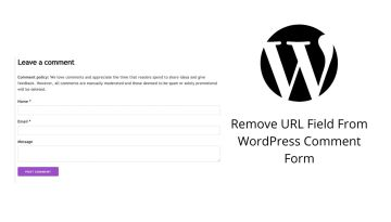 How To Remove The URL Field From WordPress Comments Form