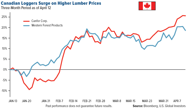 canadian loggers surge on higher lumber prices