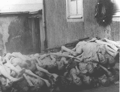 Corps entassés derrière le four crématoire à  Buchenwald. Allemagne, mai 1945.
