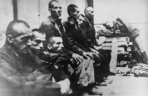 Image Result For Encyclopedia Of The Holocaust Croatia And Jasenovac