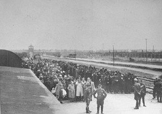 La rampa en Birkenau, mayo de 1944.