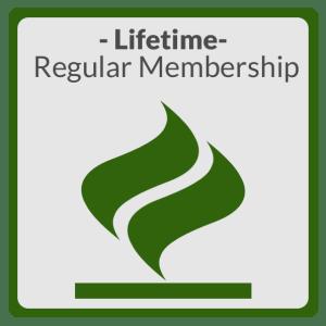 Regular-Life3