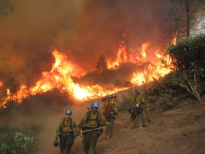 Common Denominators on Tragedy Fires – Updated for a New Fire Environment