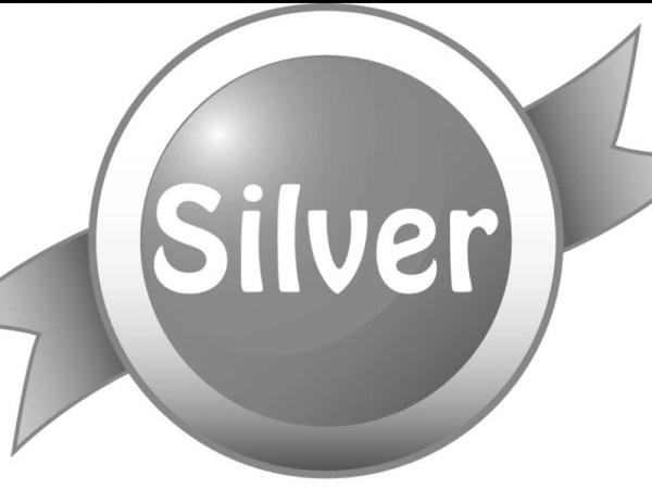 Silver Sponsorship $600