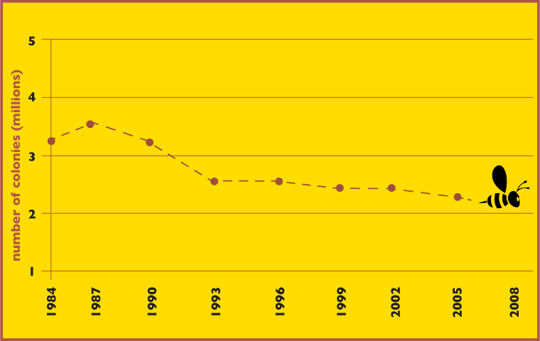This graph represents the number of honey producing colonies in the U.S.  from 1984 to 2008. The colony calculations were gathered by the National Agriculture Statistics Service based on honey producers having five or more colonies. Colonies that produced honey in more than one state are counted in each state. Overall, the number of managed honey producing colonies in the U.S. has declined since the late 1940s, when the total number of colonies peaked at almost six miillion. Information for this graphic is based on information from the International Bee Research Association.