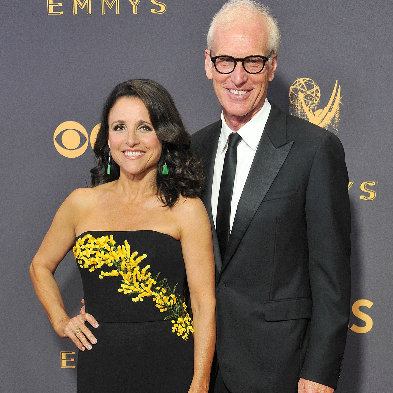 Julia Louis-Dreyfus, Brad Hall, Chicago, Cancer, Thanksgiving