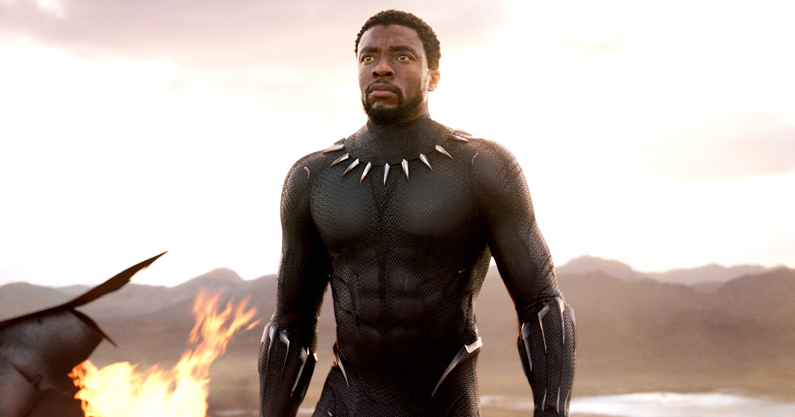 Chadwick Boseman on the 'Vulnerable' Process of Becoming 'Black Panther'