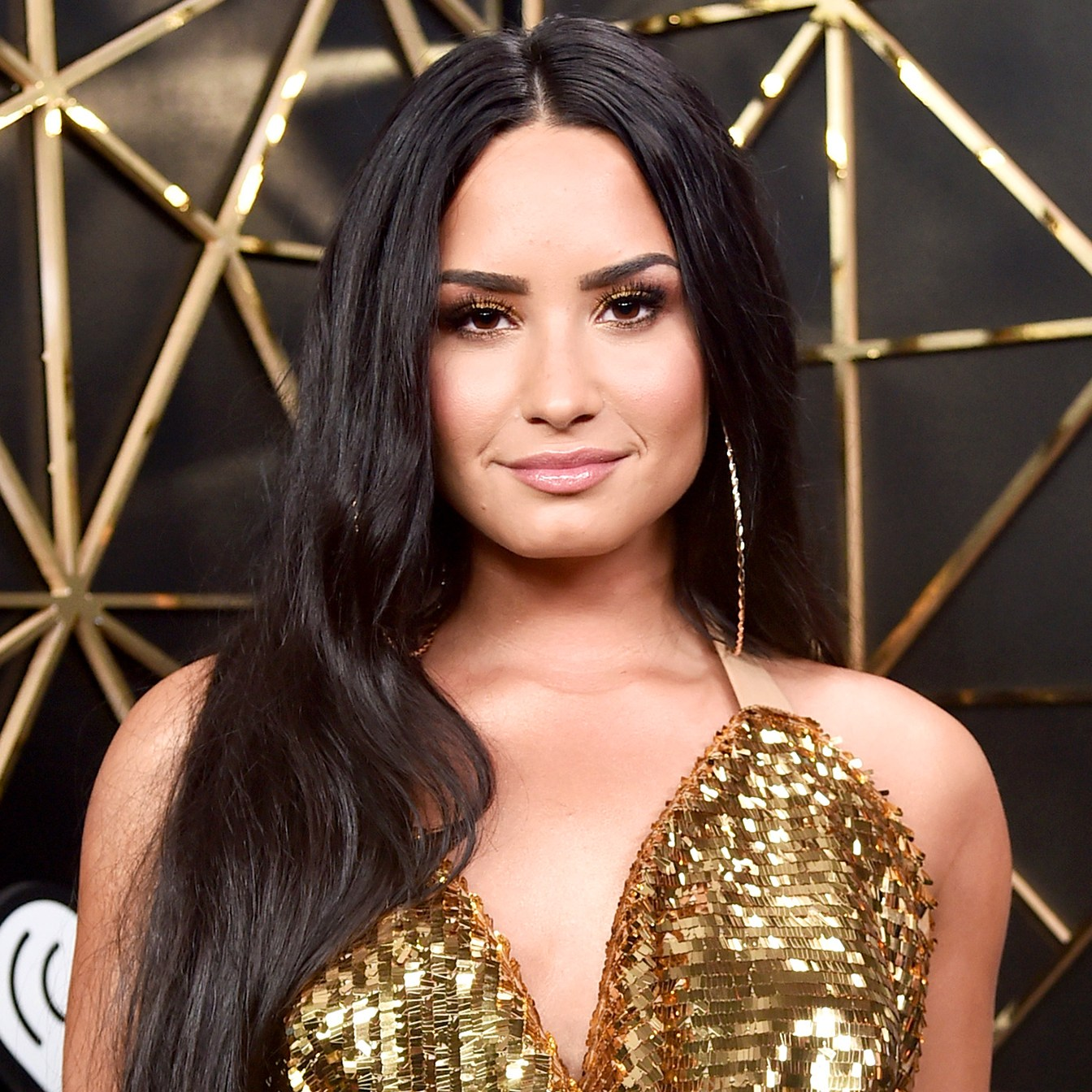 Demi Lovato bully
