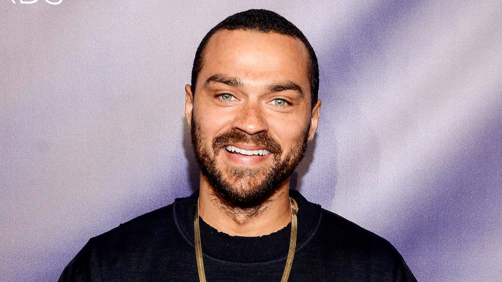 Jesse Williams Archives Us Weekly