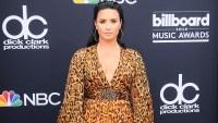 Demi Lovato, Apology, Prank