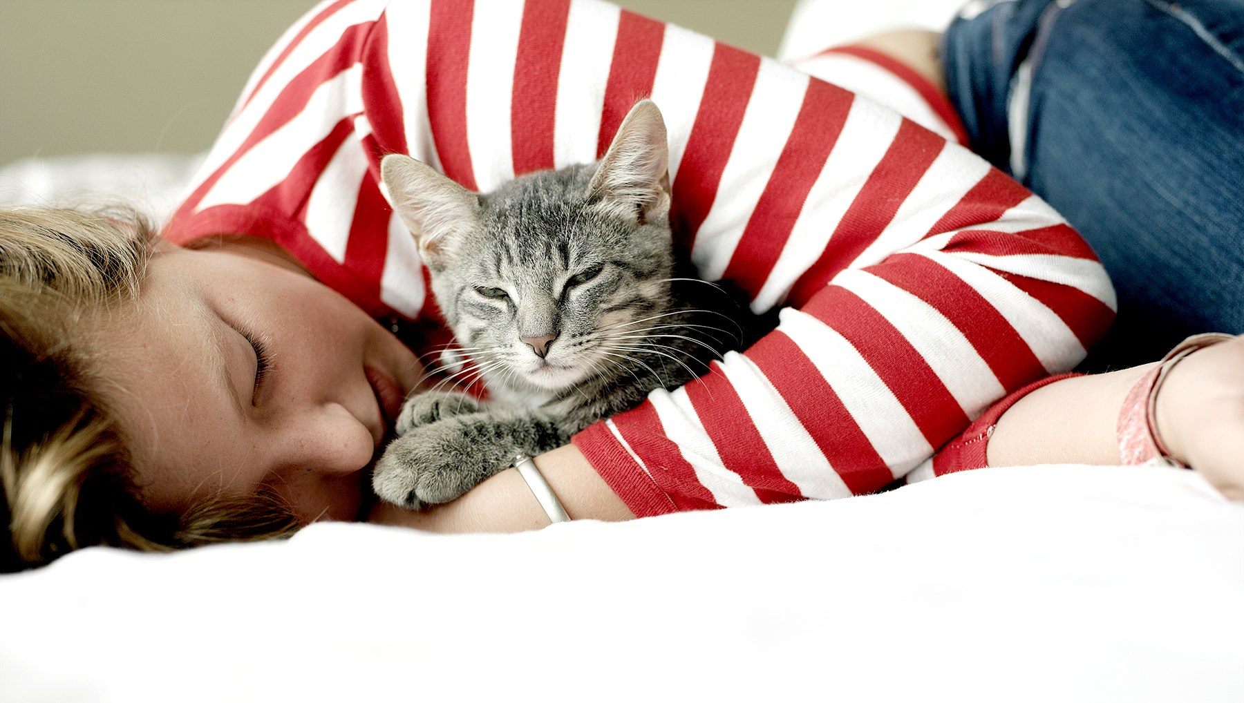 cuddly-cat