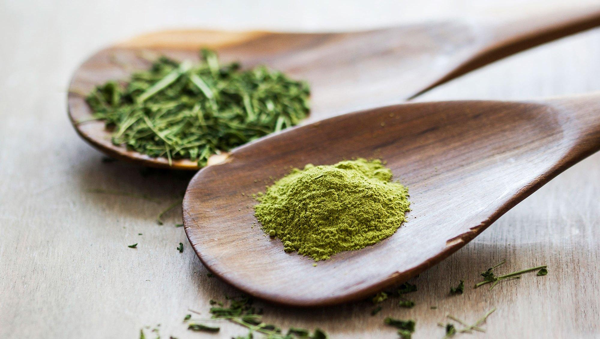 Moringa and Moringa powder