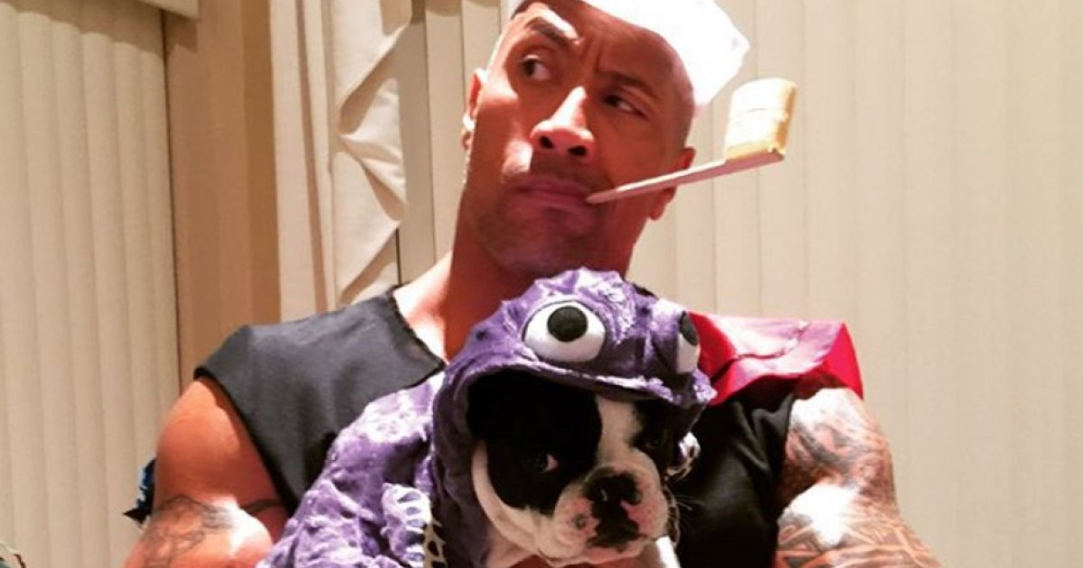 Miley Cyrus, Dwayne Johnson and More Celebrities Whose Pets Have the Best Halloween Costumes in Hollywood