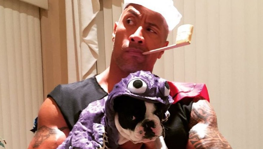 Best Celebrity Pet Halloween Costumes Ever