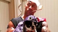 Best Celebrity Pet Halloween Costumes Ever