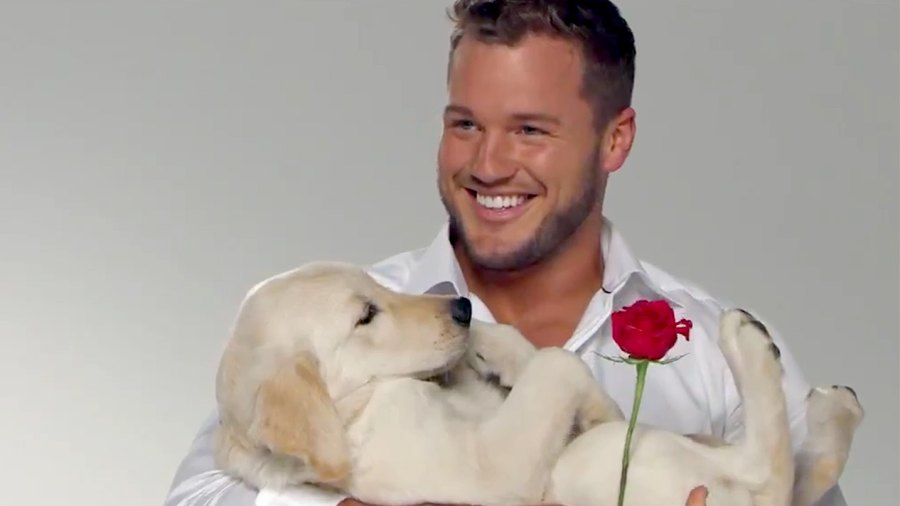 Colton-Underwood-Bachelor-art