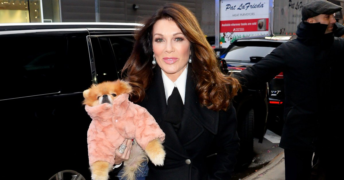 Why Lisa Vanderpump Skipped Andy Cohen's Baby Shower