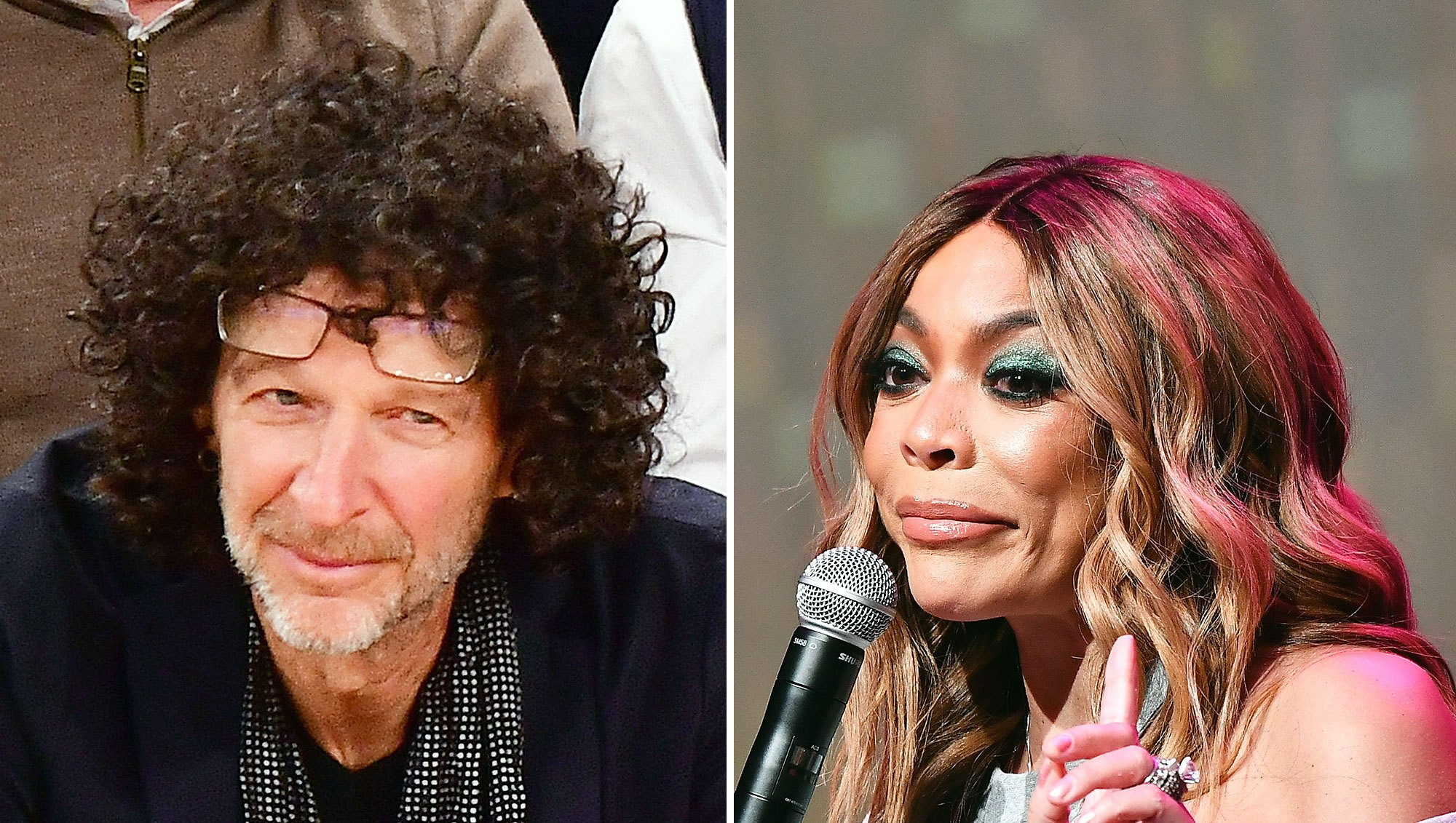 Howard Stern Wendy Williams Jealous Bitch Slams Career