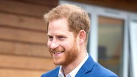 Prince Harry Bonds With Children, Plays With Winnie the Dog During Visit to St. Vincent's Catholic Primary School
