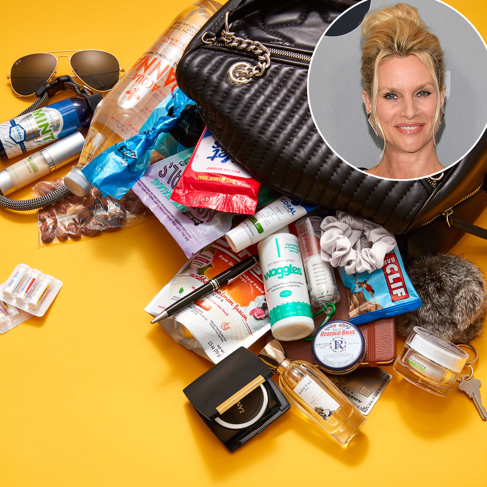 Nicollette Sheridan: What's in My Bag?