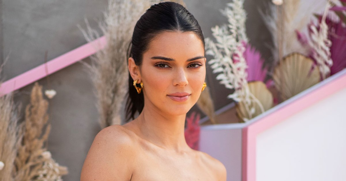 Kendall Jenner Shares New Family Pic: 'Pregnancy Is in the Air'