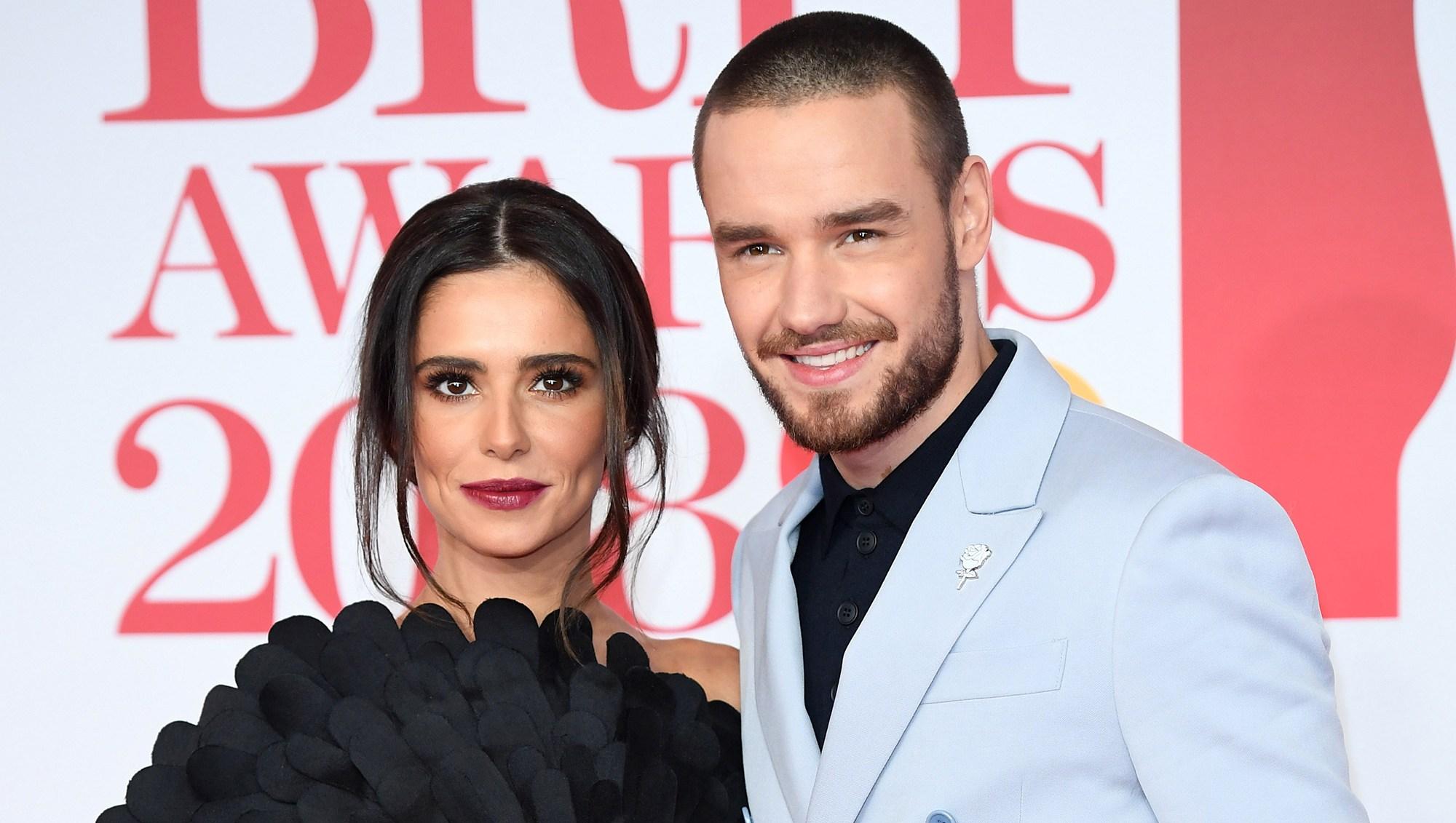 Liam Payne Coparenting Cheryl Cole