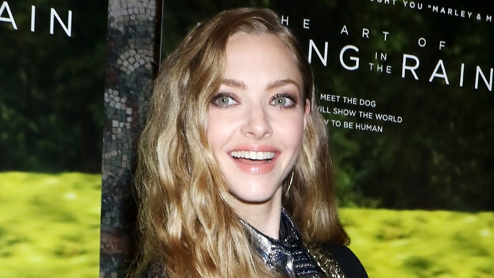 Amanda Seyfried Hot Video amanda seyfried's rare pic holding hands with 2-year-old
