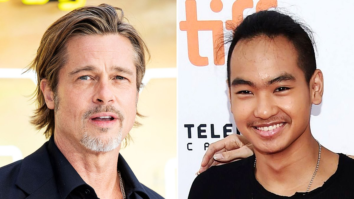 Image result for brad pitt and maddox