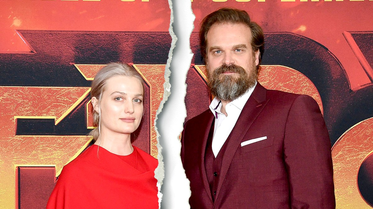 'Stranger Things' Star David Harbour and Actress Alison Sudol Split