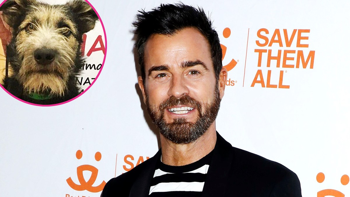 Justin Theroux Bonds With Monty, Rescue Dog Star of 'Lady and the Tramp'