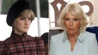 Princess Diana and Duchess Camilla
