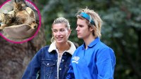Justin Bieber and Hailey Baldwin Cats and Dog Instagram