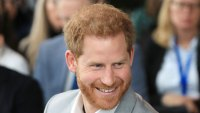Prince Harry Travalyst Press Release Can Be Planted