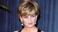 'Fatal Voyage: Diana Case Solved' Retraces Princess' Final Hours in Paris