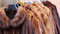 California First State to Ban Sale of Fur