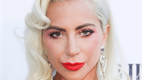 Lady Gaga Does Face Mask in Lingerie