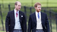 Inside Prince William and Prince Harry Relationship Over the Years
