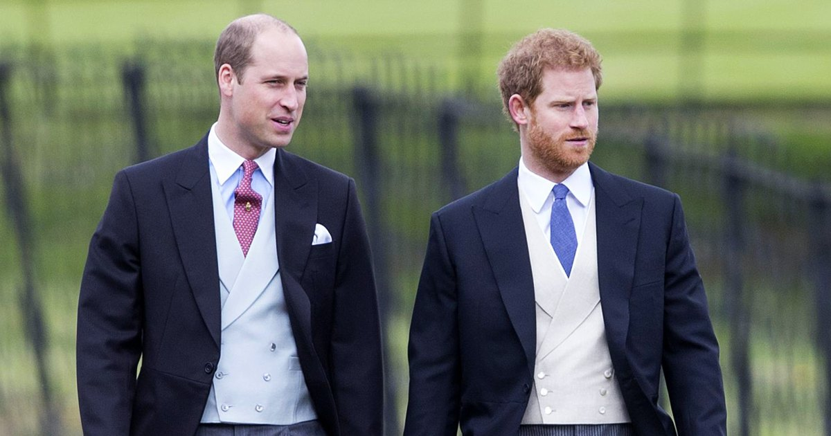 What To Expect From Prince William And Harry's Relationship