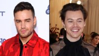 Liam Payne Says Harry Styles Is 'Polar Opposite' of Him