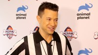 Dan-The-Rufferee-Breaks-Down-Puppy-Bowl-XVI