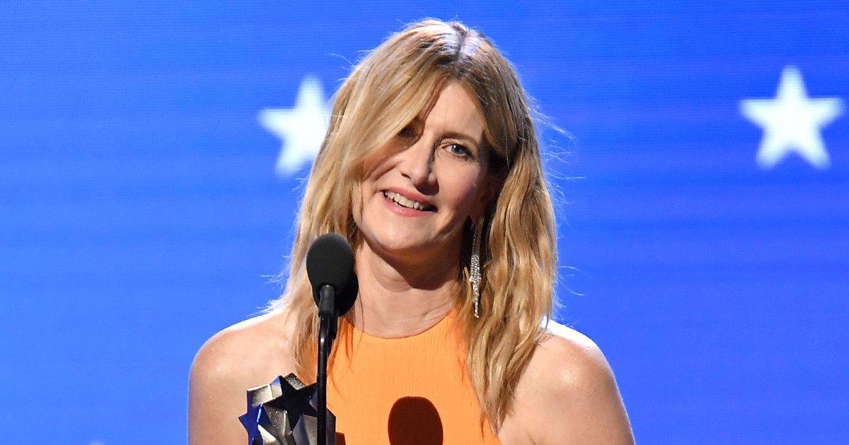 Resultado de imagen para critics choice awards 2020 laura dern