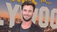 Pink, Nicole Kidman, Chris Hemsworth, More Stars Donate to Aussie Fire Relief