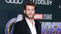 Liam-Hemsworth-Bares-His-Biceps-in-New-Gym-Photo