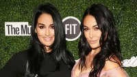 Nikki and Brie Bella Twinning Baby Bumps In Bikinis