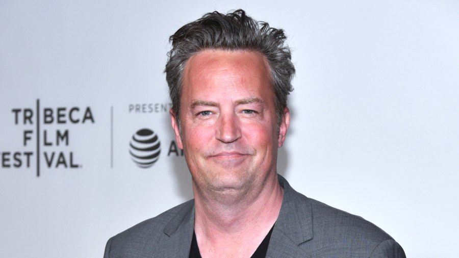 Matthew Perry Is Getting Back Into Online Dating After Molly Hurwitz Split