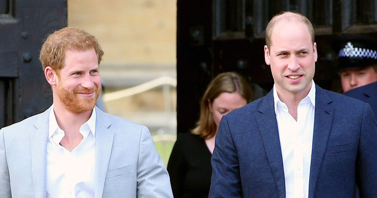 Prince Harry Is Leaning on Prince William While Struggling With L.A. Move