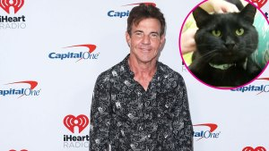 Dennis Quaid Adopts Black Shelter Cat Named Dennis Quaid