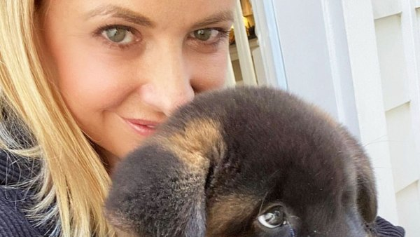 Sarah Michelle Gellar Stars Who Are Adopting or Fostering Pets During Quarantine