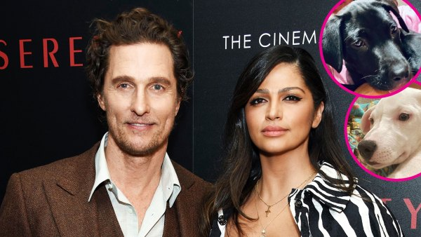 Matthew McConaughey and Camila Alves Adopted 2 Puppies Within 1 Week p